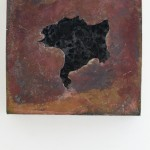 Gmuscat-9519 [1600x1200]